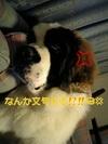 050101_070713_02_ed_m